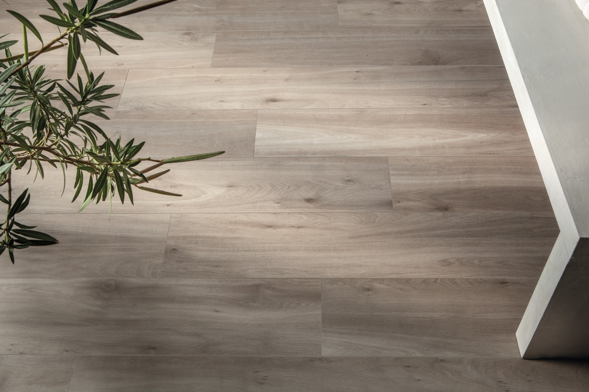 porcelain tile images: Casa range high quality photo