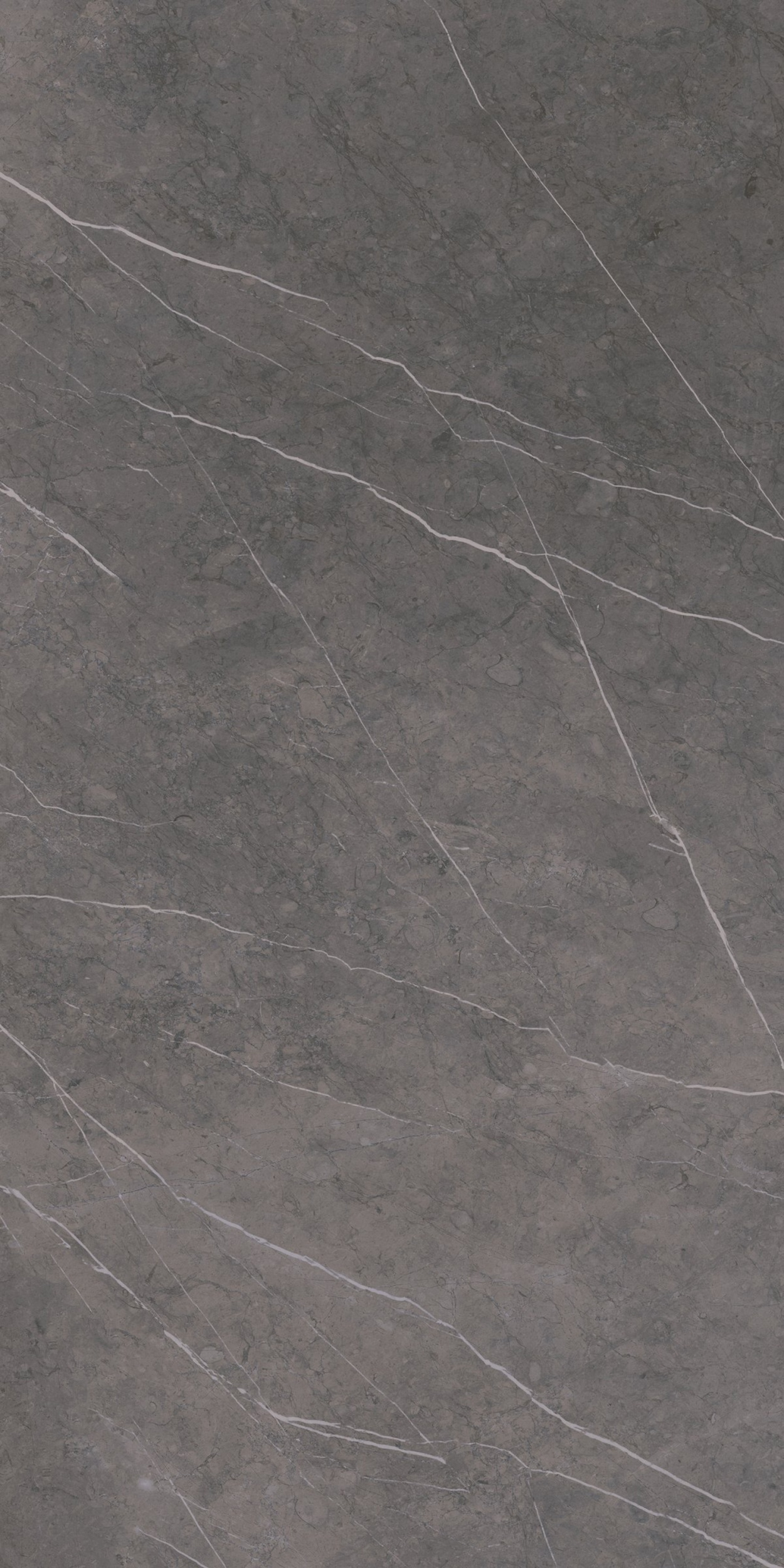 Grey Stone Polished Porcelain Tile From Our Depth 6mm