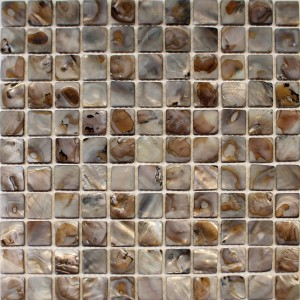Mother of Pearl - Oyster – Mosaic (ID:5545)