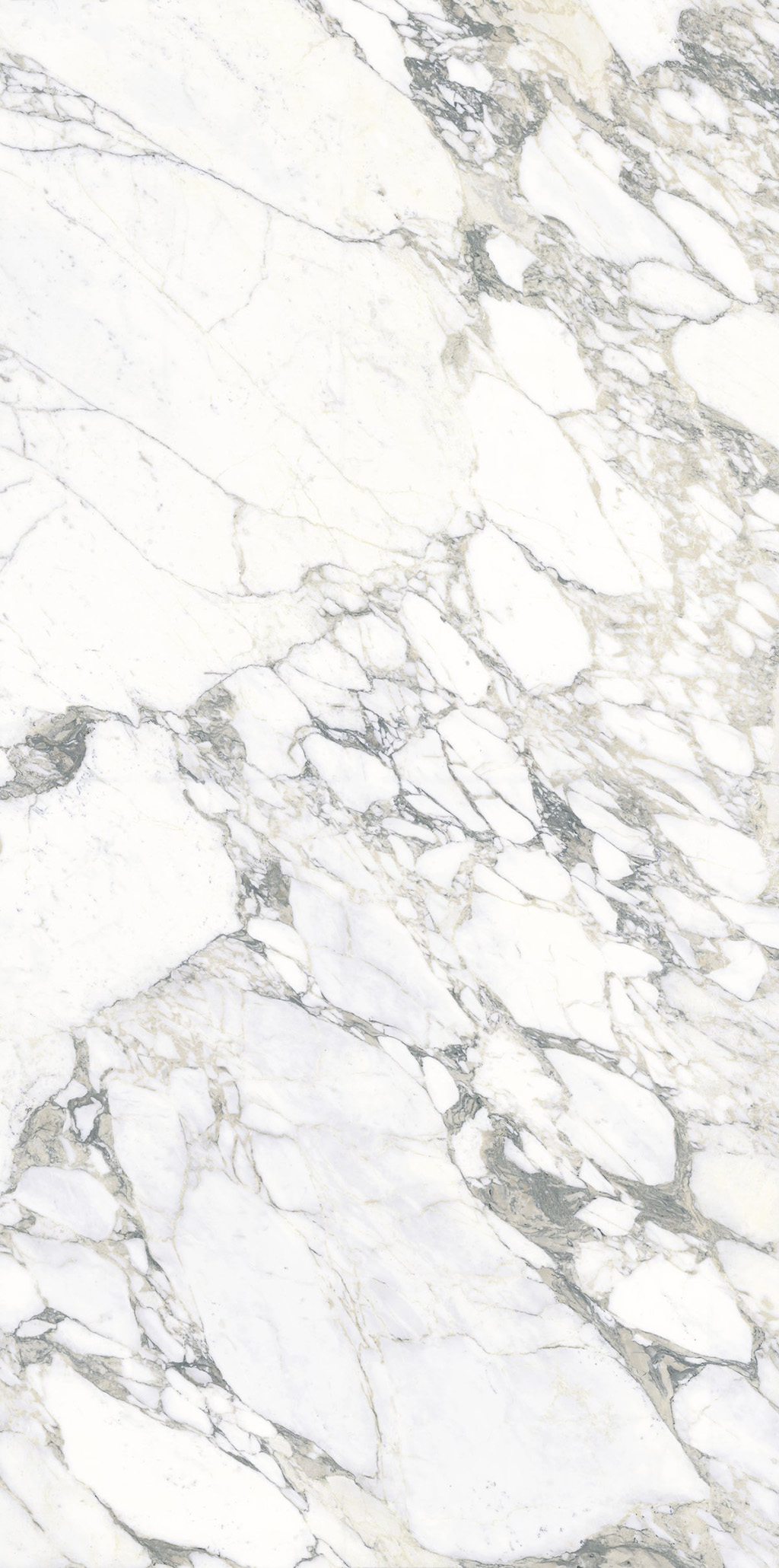 Arabescato Bookmatched Polished Porcelain Tile From Our